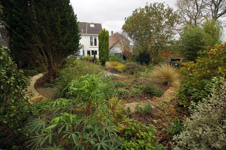 garden-29-11-15