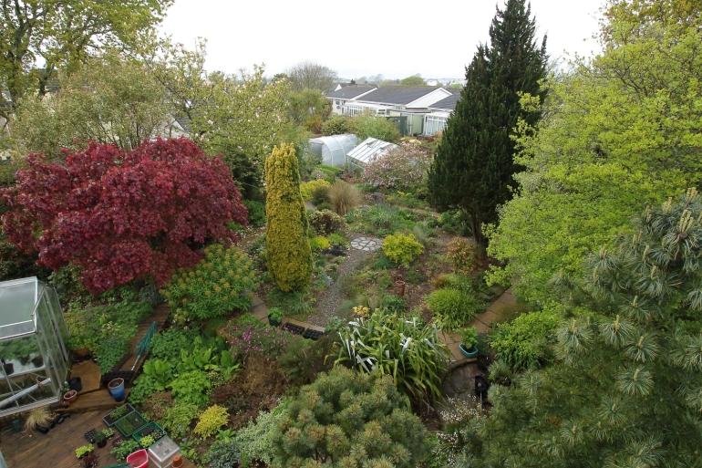 garden-30-04-17-b