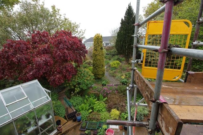 garden-30-04-17-c