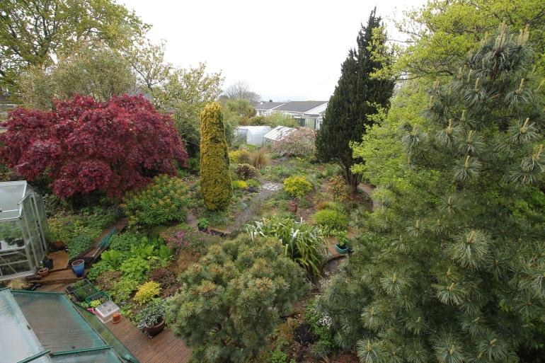 garden-30-04-17