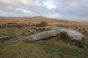 Brown Willy from Tolborough Tor
