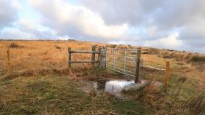 Go through this gateway