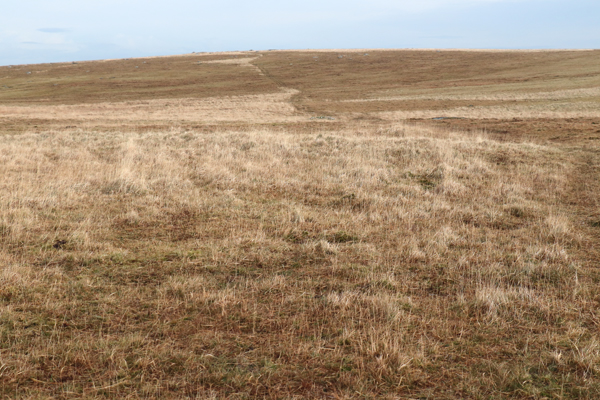 Out into the moor, a path is just about visible